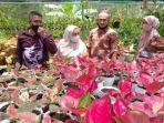 batam-flower-festival-2020.jpg
