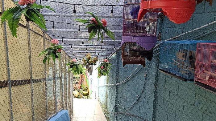 Jalan menuju Bober Backyard yang tersembunyi. Kafe ini terletak di Jalan Bojongkoneng Atas, Bandung