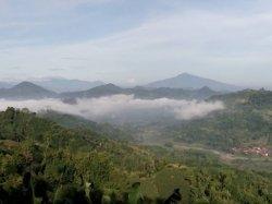 Desa Nunuk Baru, Kecamatan Jatiwangi, Majalengka