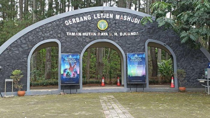 Pintu masuk ke area hutan menyala di Taman Hutan raya Ir H Juanda, Dago Pakar, Ciburial, Cimenyan, Kabupaten Bandung