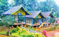 Deretan rumah khas Kampung Tajur, Desa Pasanggrahan, Kecamatan Bojong, Kabupaten Purwakarta