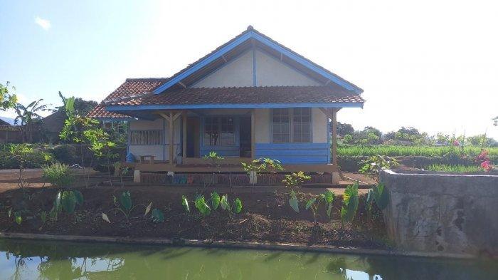 Suasana Saung Kawangi yang dibangun di tengah lahan persawahan dan kebun tembakau di Kampung Talun, Desa Pasigaran, Kecamatan Tanjungsari, Kabupaten Sumedang, Jawa Barat, Minggu (1/8/2021).