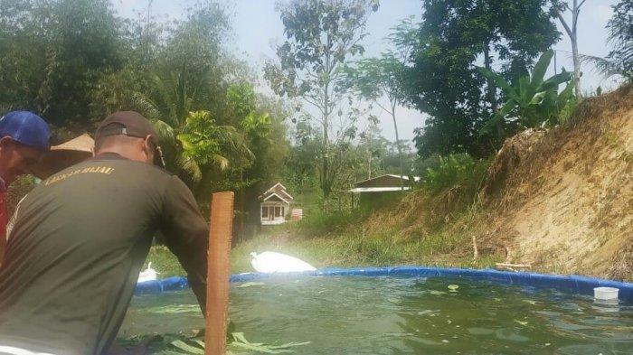 Warga Pilih Pergi ke Agrowisata Bukit Cigedud Karena Harga Sayuran Lebih Murah