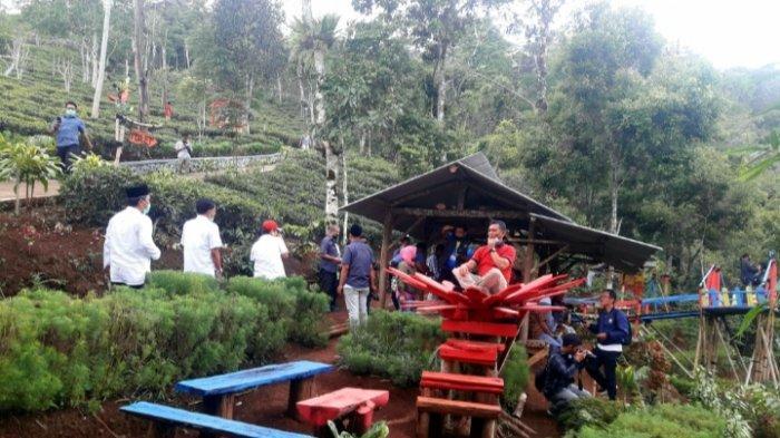 Perkebunan Teh Disbun di Sumedang, Lokasi Tepat untuk Mereka yang Merindukan Sepi