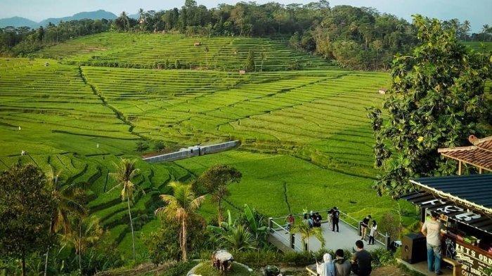 Ciboer Pass Objek Wisata Ngehits di Majalengka, Tiket Masuknya Murah, Cocok untuk Libur Akhir Pekan