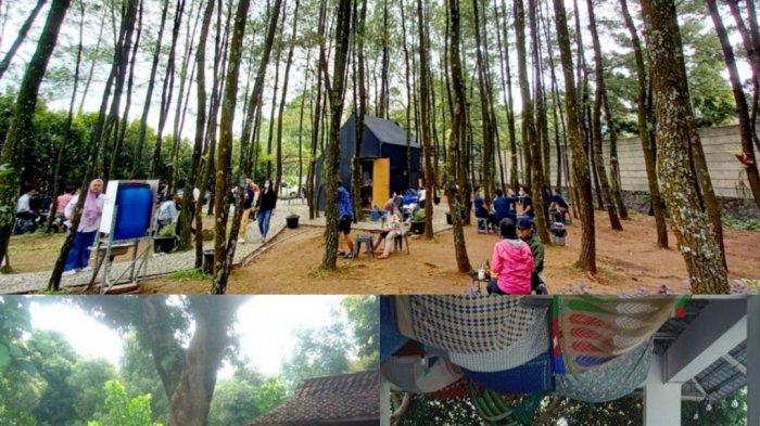 Tiga Kedai Kopi Berkonsep Alam di Bandung Ini Cocok untuk Resfreshing Mengusir Penat