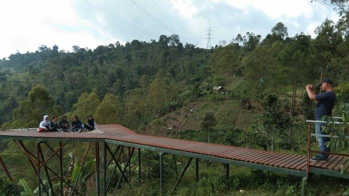 Lokasi Instagramable di Hutan Kamojang Garut, Cocok untuk Rekreasi Keluarga