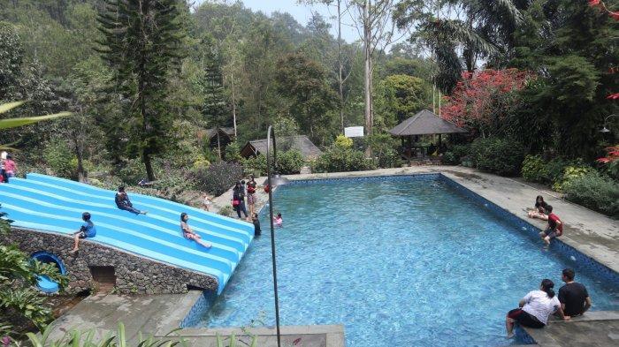 5 Keindahan Yang Bisa Anda Temukan di Taman Bougenville