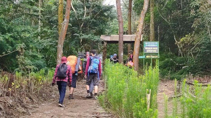 Ratusan Pendaki Pilih Jalur Pendakian Apuy di Majalengka untuk Mendaki Gunung Ciremai