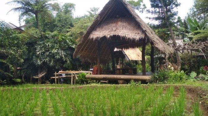 Menikmati Tiga Keunikan di Kesejukan Desa Cihideung, Kabupaten Bandung Barat
