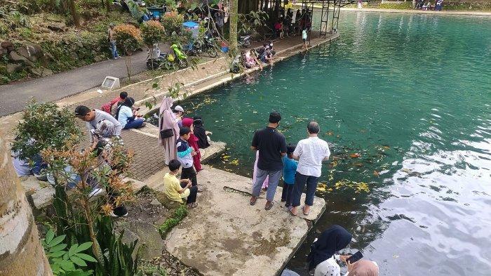 Situ Cipanten Majalengka Kian Ramai Dikunjungi Wisatawan, Pengunjung Bisa Lihat Dua Warna Air Danau