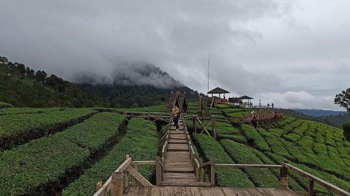 Ada 122 Destinasi Wisata di Kabupaten Bandung, Info Lengkapnya di Aplikasi Bedas Smart Tourism