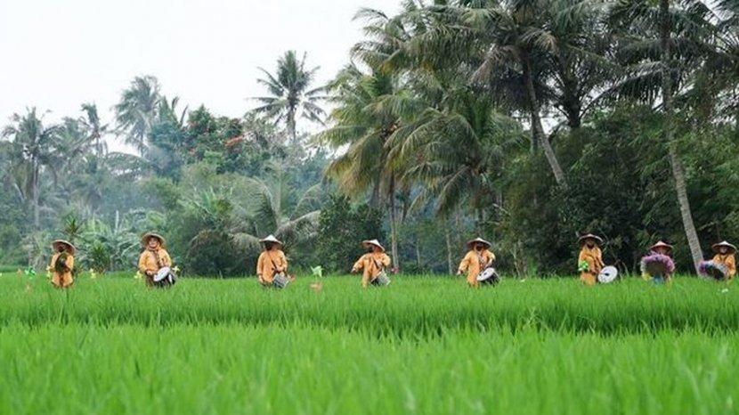 Desa Cisande di Sukabumi Masuk 50 Terbaik Anugerah Desa Wisata Indonesia