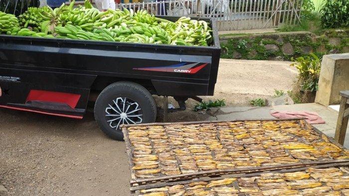 Sale pisang yang dijemur di Desa Cibadak, Kecamatan Cibeber, Kabupaten Cianjur
