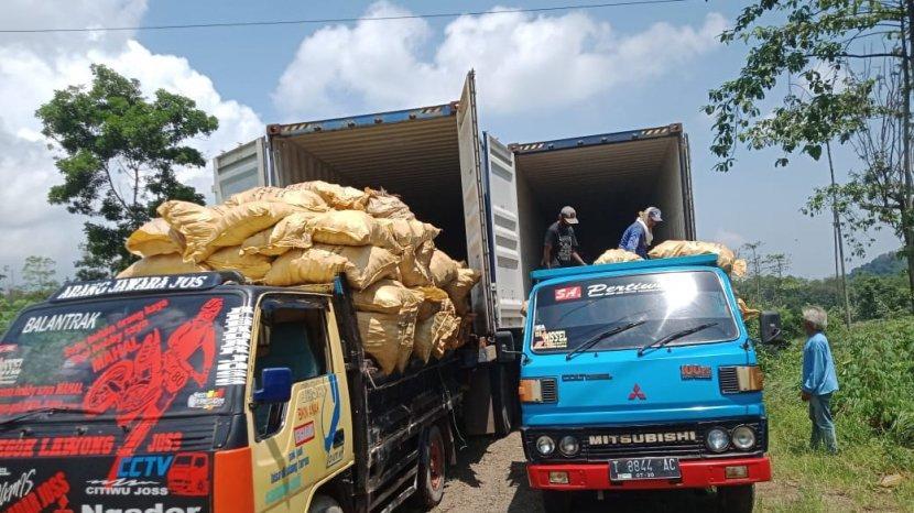 Desa Kecil di Ujung Selatan Kota Nanas Ini Produsen Arang Kayu Penambah Devisa Negara
