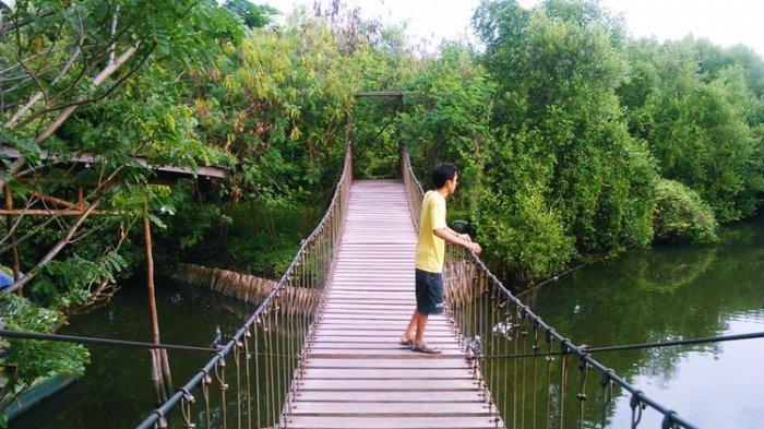 Tak Perlu ke Puncak, Ini 7 Tempat Wisata di Sekitar Jakarta yang Cocok untuk Segarkan Pikiran