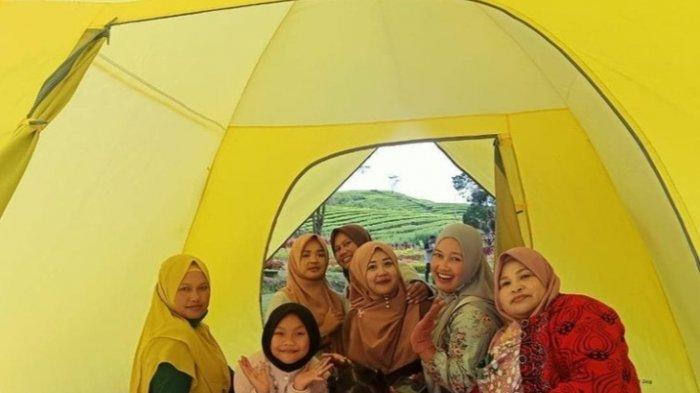 Fasilitas Menarik di Penginapan Taman Royal Nusantara, Paintball dan Camping di Kebun Teh Kayu Aro