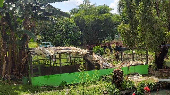 Koleksi Ratusan Jenis Anggrek, Taman Anggrek Sri Sudewi Kondisinya Kurang Terawat