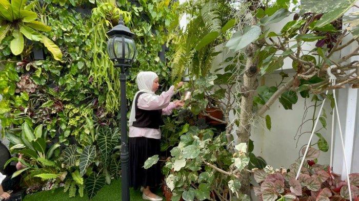 Tips Berkebun di Halaman Yang Sempit, Cobain Konsep Vertical Garden Yang Kekinian