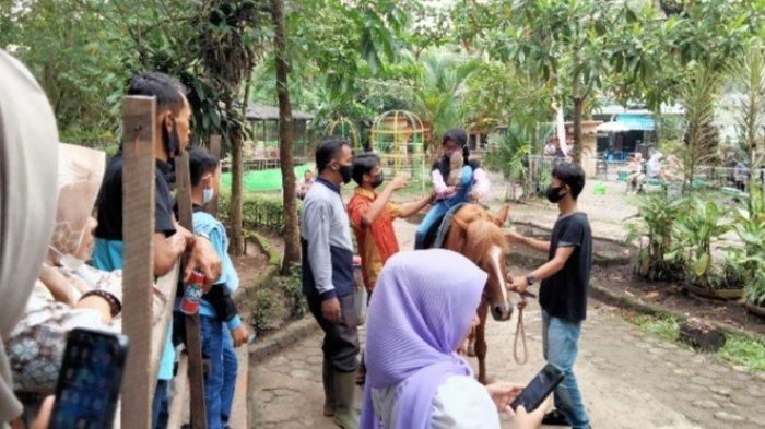 Taman Rimba Zoo Kota Jambi, Destinasi Favorit di Akhir Pekan, Kuda Tunggang Banyak Mininati