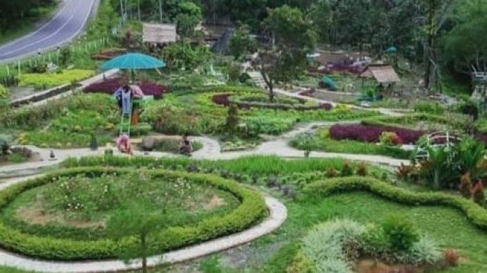 Ada Pemandangan Indah di Taman Bunga Talang Bukit Batanghari, Hilangkan Lelah Saat Berkendara