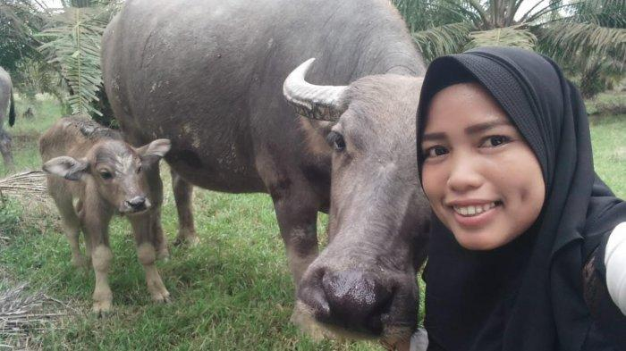 Mengenal Anisa, Ketua BPD Pulau Raman yang Hobi Nyanyi dan Punya Ternak Kerbau
