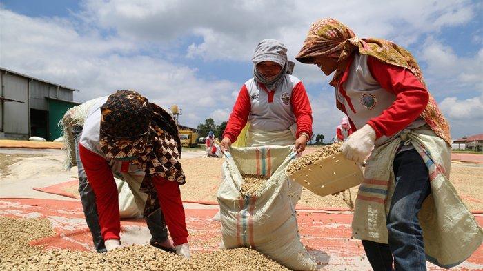 Seluruh Gerai Starbucks di Indonesia Merayakan Komitmen 99% Ethically Sourced Coffee