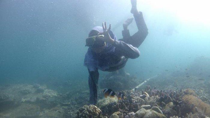 Nikmati Pesona Bawah Laut Bangsring Underwater dan Pulau Tabuhan, Primadona Banyuwangi