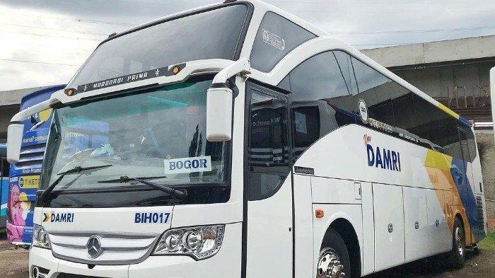 Jadwal Pemesanan Tiket dan Aturan Perjalanan DAMRI untuk Libur Natal 2020 dan Tahun Baru 2021
