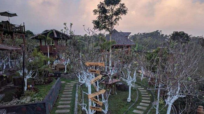 Dgoendoe Cafe Tempat Nongkrong di Tengah Kebun Apel, Bonus Pemandangan Pegunungan Kota Batu