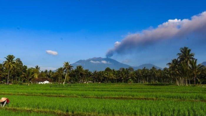 Bandara Internasional Banyuwangi Tutup Sementara Akibat Abu Vulkanik Gunung Raung