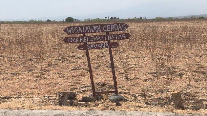 Simak, Lima Hal Penting Saat Berlibur Akhir Tahun di Taman Nasional Baluran.