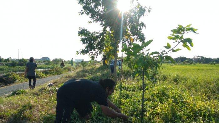 Galakan Pelestarian Alam Hutan Kota, Komunitas Suroboyo Rowo Wiyung Tanam Berbagai Jenis Pohon