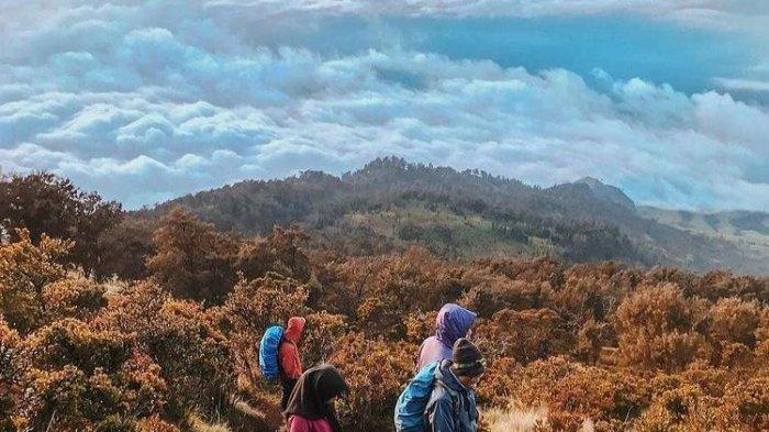 Semua Jalur Pendakian Gunung Arjuno Welirang Mulai 27 Maret 2021, Pendaki Wajib Registrasi Online