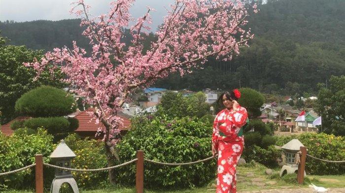 The Onsen Hot Spring Resort Batu Lokasi Liburan ala Jepang, Pakai Yukata Hingga Berendam Air Panas