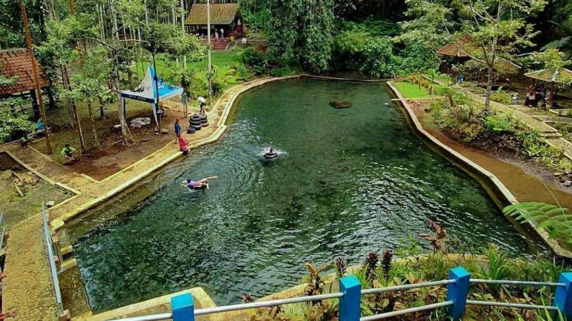 Keindahan Desa Tamansari Banyuwangi yang Masuk 50 Besar Desa Wisata Terbaik di ADWI 2021