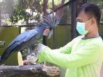 perawatan-hewan-di-kebun-binatang-surabaya.jpg