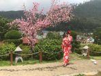 the-onsen-hot-spring-resort-batu.jpg