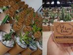 souvenir-kaktus-kediri.jpg
