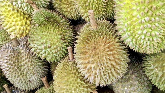 Tips Sederhana Memilih Buah Durian