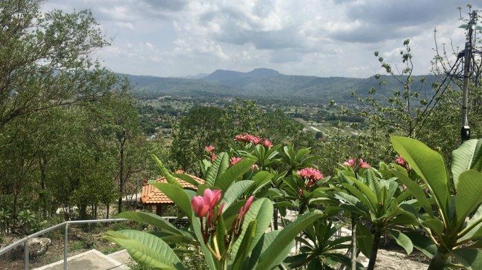 Menikmati Pemandangan Indah dari Ketinggian di Gunung Wangi