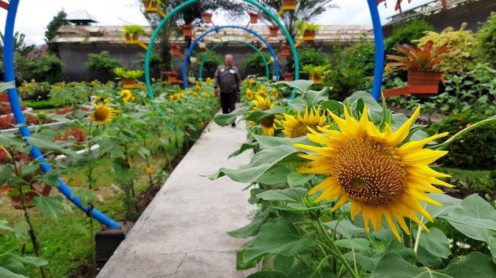 Kebun Bibit Senopati (KBS) Jadi Daya Tarik Masyarakat Sekitar