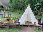 camp-coffee-nature-1.jpg