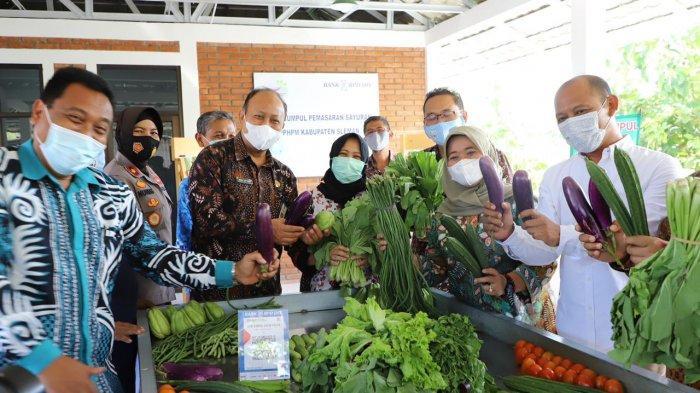 Titik Kumpul Sayur Perkumpulan Petani Hortikultura Puncak Merapi untuk Kepastian Kualitas Pertanian