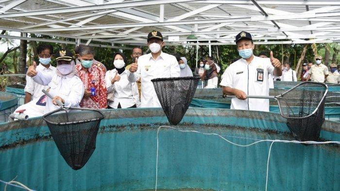 Budidaya Ikan dengan Sistem Bioflok Lebih Efisien dan Menguntungkan