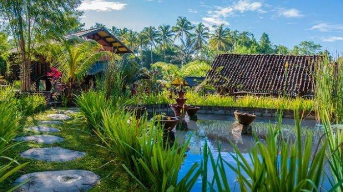 Tema Hingga Potensi Daya Tarik di Desa Wisata Kembangarum