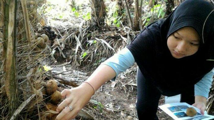 Desa Wisata Gabugan Punya Makanan Khas, dari Salak Hingga Tiwul