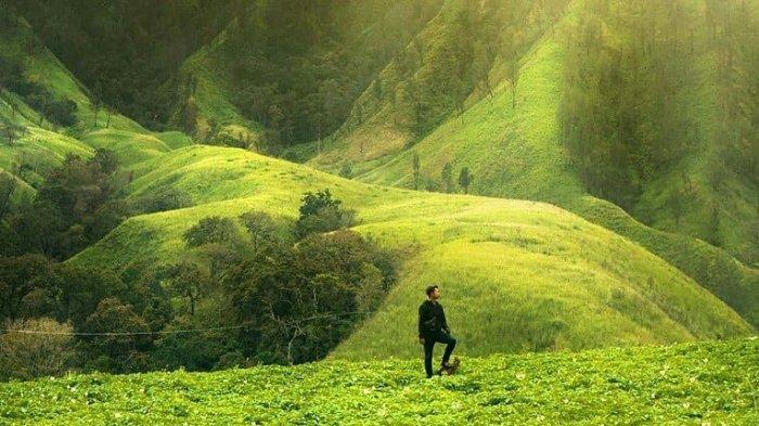 Ada Negeri Dongeng di Bondowoso Bernuansa Hijau dan Sejuk