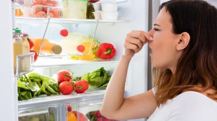 Cara Membersihkan Kulkas Hanya dalam Waktu 30 Menit