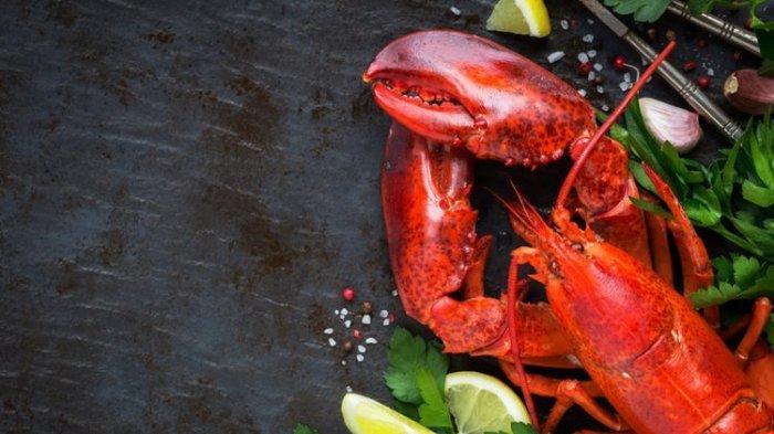 Mengapa Lobster Berubah Warna Jika Dimasak?